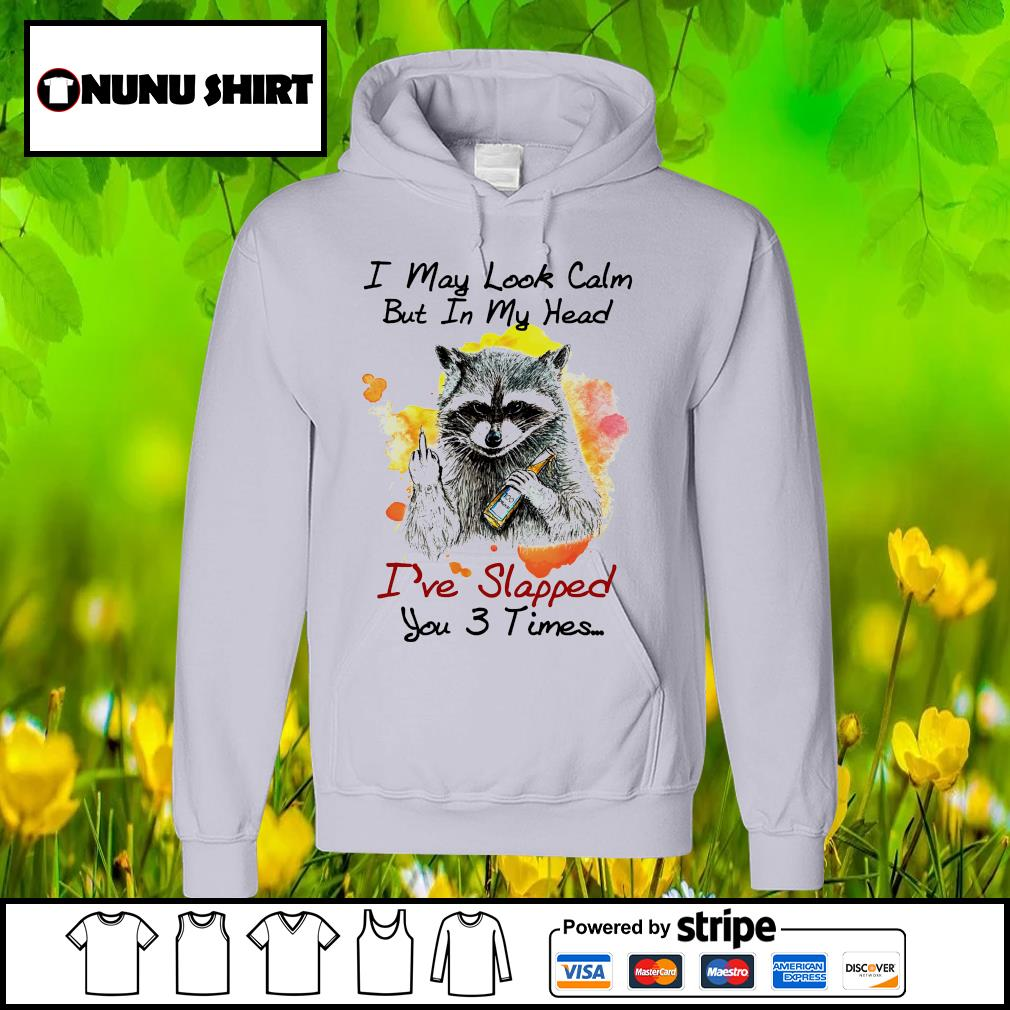 Raccoon I may look calm but in my head I've lapped you 3 times hoodie